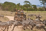 hamag.african.safari.jeep.Grand.Circle.emsm.T27666.jpg