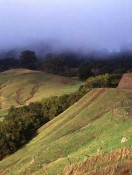 Top 10 Travel Hikes, Walks and Tours in California Wine Coast Country Along Highway One