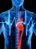 Are Too Many Healthy Adults Getting Unnecessary Heart Screenings?