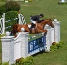 Still Time to Catch Horses in Hamptons