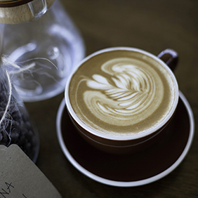 Daylight Mind Coffee
