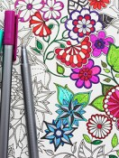 Coloring Books for Adults?