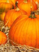 Fall is for Pumpkins and That Means More than Pie