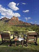 "Arizona Kicks Off New Active Travel and ""Next Stop"" Series"