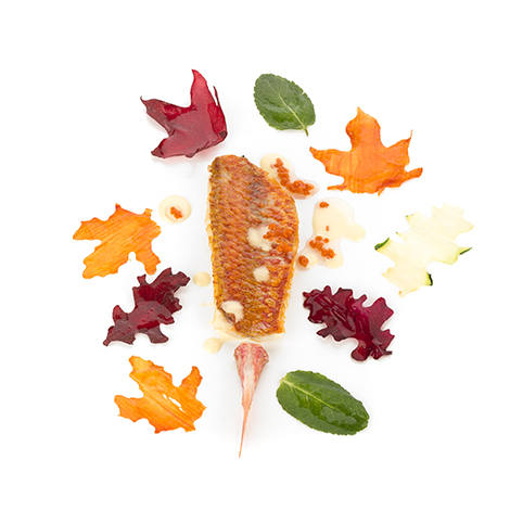 Red mullet with oak leaves. Photo: Coconut