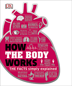 9781465429933-3-how-the-body-works-282
