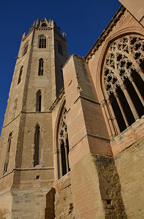 Turó Seu Vella Cathedral