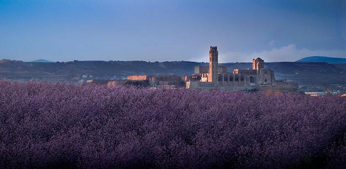 Tourism Lleida