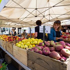 Farmers Market New York City
