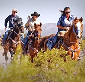White Stallion Ranch