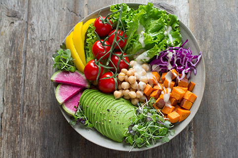 healthy diet healthy aging.net