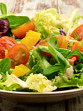vegetarian diet. healthyaging.net