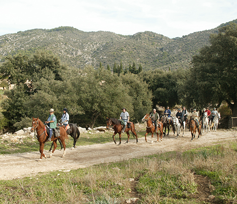 horseback riding in Mallorca