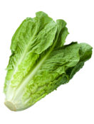 If You Don't Know Where Your Romaine Lettuce Was Grown, Don't Eat It