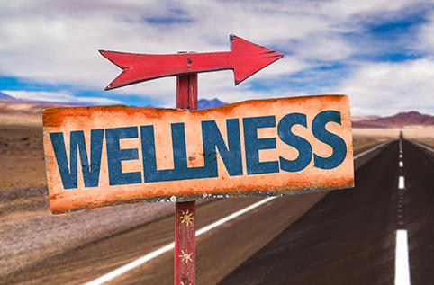 wellness healthyaging.net