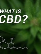 What You Need to Know About Products Containing Cannabis, CBD